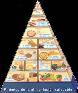 piramide-de-alimentacion